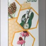 Jarabe Bronqui Ton GHF